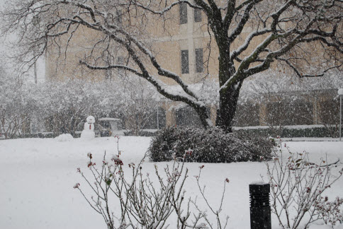 Image of snow outside library Feb 2010